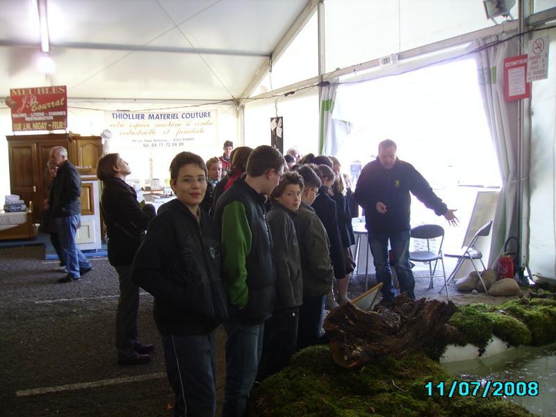Comice 09 (3)